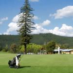 Bright Golf Club
